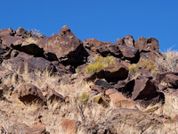 Petroglyphs cover the rocks
