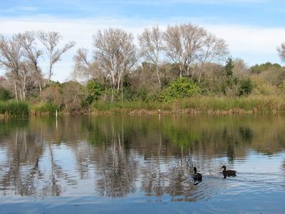 El Dorado Park and Nature Center, Long Beach